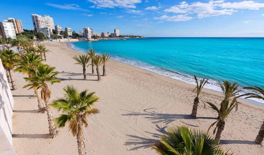 Top 8 things to see in AlicanteLocal News | Top 8 things to see in Alicante