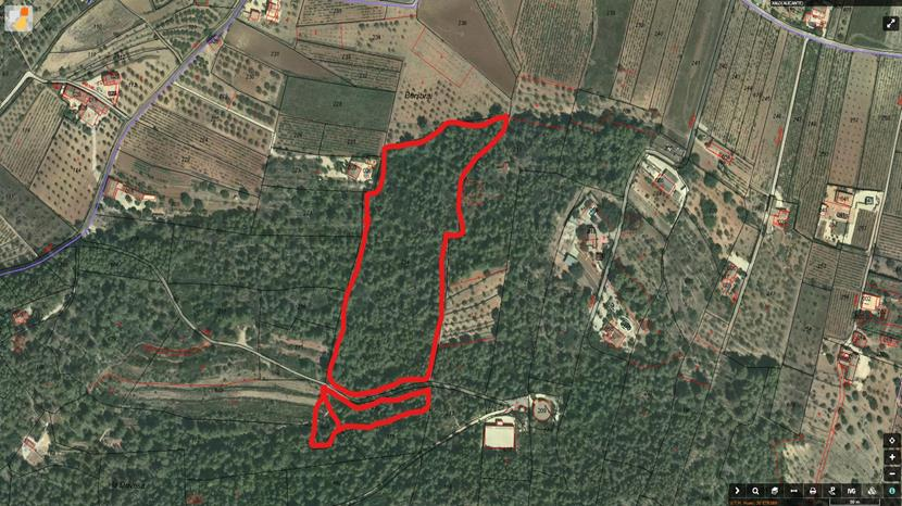 Building plot in Jalon